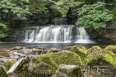 Cotter Force. (miketonge) Tags: cotterforce cotterdale northyorkshire dales waterfall hawes garsdale moss rocks falls