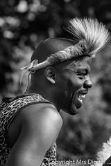 Mrs Digital Africa Alive _MG_9626 PF.jpg (Mr and Mrs Digital) Tags: dancing zulu african people africaalive dancer mightyzulunationdancetroupe suffolk 2017