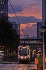 Tin Shui Wai Light Rail (mikemikecat) Tags: tin shui wai light rail mtr lightrailtransit lightrail yuenlong tinshuiwai sunset magicmoment magichour 香港輕鐵 輕便鐵路 mikemikecat