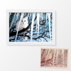 Restoration_PF8 (Simon@PF) Tags: vector frame picture white illustration wood photo design wall modern background isolated image 3d wooden box text shadow painting a4 empty graphic quote abstract art realistic cat icicles restored rescued repaired restoration memories family pets