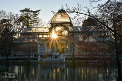 Through the Crystal (Matteo Liberati) Tags: elretiro palaciodecristal spain parquedelretiro puestadesol madrid sunset tramonto spagna españa sun sole sol raggi rayos rays sky cielo building edificio parco park parque inverno winter invierno architettura arquitectura architecture glass vetro cristal vidrio pond stagno estanque crystalpalace lago trees alberi arboles light luce luz scenery scenical outdoors exterior día giorno day colour colore color scenic pittoresco vivace pintoresco escénico garden giardino jardín backlit controluce contraluz