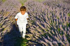La natura non è un posto da visitare. E' anche la casa dei bambini!!! (Gianni Armano) Tags: la natura non è un posto da visitare e anche casa dei bambini foto lavanda lu monferrato alessandria piemonte italia italy gianni armano photo flickr