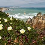 Praia Camilo thumbnail