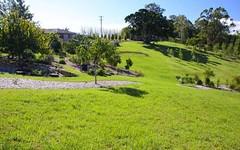 246 Duncan Road, Numulgi NSW