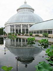 Double bubble 1 (DannyAbe) Tags: newyorkbotanicalgarden conservatory glass dome reflection bronx