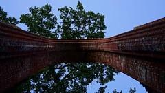 Klosterruine Eldena Greifswald (franz-wegener.de) Tags: klosterruine eldena greifswald kloster mecklenburgvorpommern sonya7m2 sony35mmf28za caspardavidfriedrich blauestunde leicax1