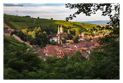Ribeauvillé  et son écrin - Alsace - Haut Rhin (jamesreed68) Tags: alsace 68 hautrhin france grandest ville village église ribeauvillé nature forêt paysage