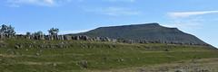 Ingleborough (Bri_J) Tags: yorkshirethreepeaks walk yorkshiredales nationalpark northyorkshire uk yorkshire threepeaks countryside nikon d7200 ingleborough rocks panorama hill