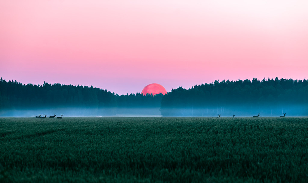 red moon finland - photo #16