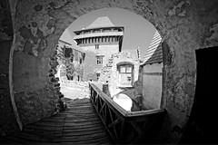 Lipnice nad Sázavou, Czech - Castle (petrwag) Tags: sonya6500 samyang8mm fisheye manuallens