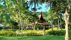 Tropical Garden (gerard eder) Tags: world travel reise viajes asia southeastasia thailand phuket southernthailad tropical tropicalisland tropicalgarden garden garten jardines jardintropical green outdoor