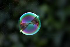 near burst... (ggcphoto) Tags: nearburst blowing bubbles wind sky foambubble foam reflection closeup blue green