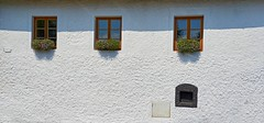 Windows with flowers (Yirka51) Tags: glass windowframe window wall shadow plant parapet leaves leaf house flower flora facade decorated countryside country cottage corn building baking architecture