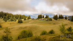 Landscape (pandp.snowflake) Tags: france mountains summer summer2017 tiltshift trees treesforest verchaix auvergnerhônealpes fr