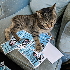 All your slaps are belong to me (id-iom) Tags: slap sticker cat pilot advice fight plan properly quote kitten manx cute