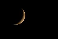 (Jérôme_M) Tags: canon eos 600d sigma 150600 lune moon croissant nuit night aquitaine landes seignanx saintmartindeseignanx