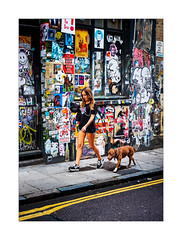 A Girls Best Friend.... (Dave Fieldhouse Photography) Tags: streetphotography street streetart shoreditch bricklane portrait dog dogwalker pavement doubleyellowlines london lady girl graffitti posters colour summer city urban fuji fujifilm fujixpro2 fujinon35mmf2 wwwdavefieldhousephotographycom
