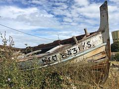 Bassin d'Arcachon : Gujan Mestras (Maillekeule) Tags: aquitaine gironde bassin arcachon gujan mestras port huitre ostreicole ostreiculture