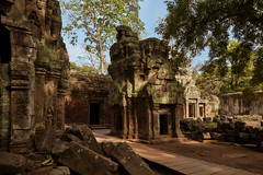 Ta Prohm – Temple yard (Thomas Mülchi) Tags: angkor siemreap cambodia 2018 siemreapprovince taprohm temple yard templeyard wallcarvings trees architecture krongsiemreap kh