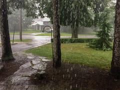 Rainy Day in Toronto _ (Gene Mordaunt) Tags: toronto frrontdoor rain street frontdoor