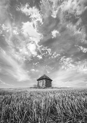The portal (grbush) Tags: landscape bw blackwhite monochrome sky clouds field farm farming agriculture rural cambridgeshire wheat harvest minimalism minimalist dramatic sonyilce7 tamronaf90f28disp