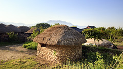 Grass Hut (Synghan) Tags: grasshut grass hut thatch thatched house architecture building built structure highangle old style tradition traditional shadow roof rooftop pillar wall jeollanamdo naganfolkvillage folk village mamade artificial suncheon photography horizontal outdoor colourimage fragility freshness nopeople foregroundfocus adjustment wideangle thatchedhouse tranquility peace asia korea korean ancient canon eos600d 600d sigma 1770mm f284 dc macro lens 낙안읍성 풍경 지붕 초가 초가집
