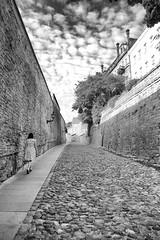 The way up (Mikhail Korolkov (OFF)) Tags: brickroad street clouds oldcity architecture tallinn estonia blackandwhite monochrome