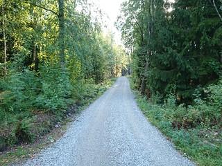 Prestegårdsveien_3940