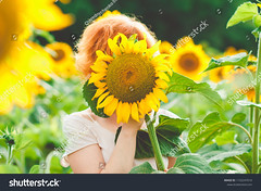 red-haired girl covered her face with a sunflower, girl incognito enjoying nature on the field of sunflowers at sunset (ig_royal6969) Tags: backlight beauty yellow beautiful girl nature summer sunflower young field flower portrait pretty woman happiness outdoor sunny caucasian cheerful fresh happy joyful countryside season sky dress enjoy hair landscape smile joy fashion blooming green natural one person cute agriculture country sun sunlight face freedom human health floral hand tenderness redhead sale shutterstock