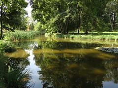 Teich im Schlosspark Molsdorf (germancute) Tags: nature outdoor park plant pond thuringia thüringen tree teich water wasser fisch