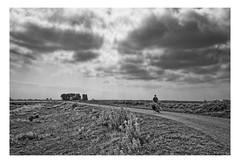 Tiengemeten (Photodoos) Tags: monochrome tiengemeten landscape bw canonnl