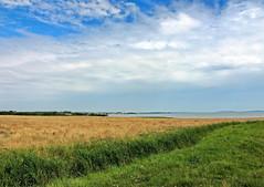 Landschaft (Wunderlich, Olga) Tags: rügen insel kuhweide wasser himmel wolken blau grün reif graben naturaufnahme landschaftsbild mecklenburgvorpommern