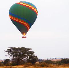 Floating Over Serengeti National Park (JFGryphon) Tags: hotairballoon tanzania serengetitanzania