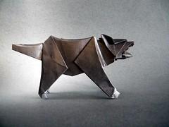 Tasmanian Devil - Kunsulu Jilkishiyeva (Rui.Roda) Tags: origami papiroflexia papierfalten demónio da tasmânia tasmanian devil kunsulu jilkishiyeva