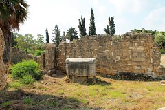 IMG_0450 (Nai.Sass) Tags: lebanon trave tyre sour anjar baalback ruins roman byzantine middle east temples summer vacation sea amateur