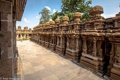 kailasanathar Temple (Balaji Photography - 5 ,400,000+ views -) Tags: canon canon70d sculpture tamilnadu india art hetitage histoticalpallavaarchitecture rocktemple monuments historical ancient artwork kanchi kailasanathartemple