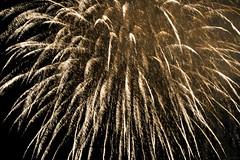 180810_LINZ_162 (Rainer Spath) Tags: österreich austria autriche oberösterreich upperaustria linz donauinflammen feuerwerk fireworks