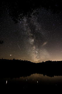 Milkyway over lake and trees
