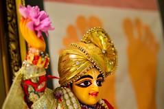 DSC_6272_3093 (Janardan das) Tags: spirituality gaudiya