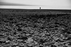 Alone (halifaxlight) Tags: canada novascotia annapolisvalley bayoffundy scottsbay beach sea figure silhouette lowtide rocks solitude misty bw alone