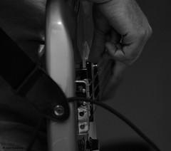 Strumming the Bass (John Neziol) Tags: jrneziolphotography portrait photography bassguitar brantford blackwhite nikon monochrome softfocus closeup nikoncamera nikond80 nikondslr naturallight guitarstrings hand