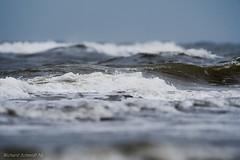 North Sea Surf (De Hollena) Tags: branding brandung golf holland lespaysbas meer nederland niederlande noordholland noordzee nordholland nordsee northsea sea see surf thenetherlands wave welle zee