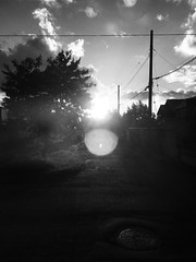 August Sunset 3 (sjrankin) Tags: 17august2018 edited view road clouds trees sun sky sunset kitahiroshima hokkaido japan grayscale