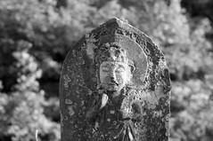 DSC03866 普光寺の石仏 Fukohji Temple Stone Buddha (Keishi Etoh rough-and-ready photoglaph) Tags: sony nex6 sonynex6 apsc nex nikkor50mmf2 newnikkor50mmf2 nikon nikkor 75mm mf manualfocuslens primelens fixedfocallengthlens oldlens nf nikonf 単焦点 中望遠 fukohjitemple omuta 大牟田 普光寺 bw monochrome blackandwhite