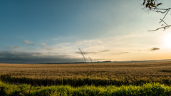 Countryside - Sunset - Pardinho/SP - 1 (Enio Godoy - www.picturecumlux.com.br) Tags: rokinon2812mm 16x9 pardinhosp sonyalpha viveza2 sunset countryside sky sony sony03 bluesky sonyalpha6300 niksoftware