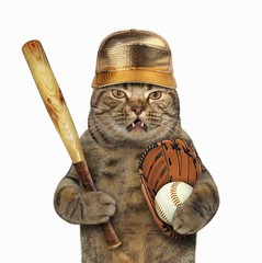 https://getcatcrazy.website/blogs/news (Getcatcrazy) Tags: cat baseball player bat american game play pet funny creative pitch runner batter catcher strike world series win golden set white background ukraine