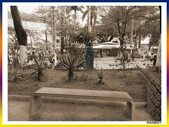 The city seat... (Guilherme Alex) Tags: city cityscape citylife citycenter cityview citymorning cityculture square central center green grass rocks blackandwhite sepia oldstyle tree leaves life live world teófilootoni minasgerais brazil amateur art benchs people seat pole bus lonely car citizen urban urbanization path plaza morning way samsung j2 prime garden living