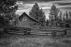 CC Quarter Circle (D E Pabst Photography) Tags: agriculture corral blackandwhite monochrome wooden garfieldcounty farm ranch southeastwashington barn fence