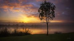 The Mighty Murray River - South Australia (Jacqui Barker Photography) Tags: southaustralia murraybridge murrayriver rivermurray riverland australia waterway foggymorning fog sunrise australiansunrise