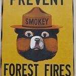 Smokey thumbnail